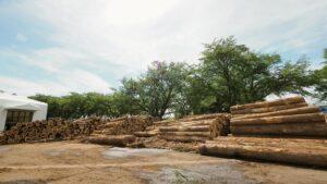 たくさんの材木